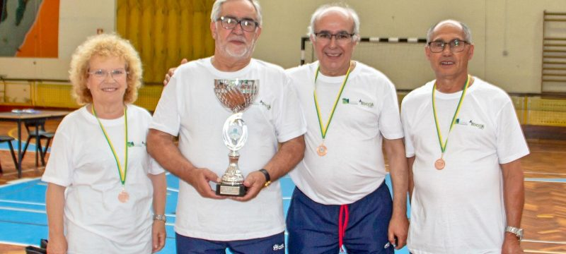 093caba32f Os Maiorais de Lustosa venceram a final da Liga Boccia Sénior de Lousada